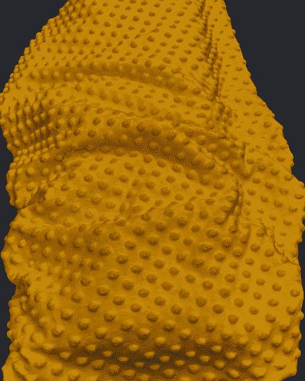 tissu minky jaune moutarde